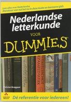 Voor Dummies - Nederlandse letterkunde voor Dummies