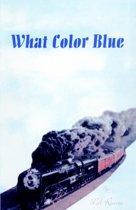 What Color Blue