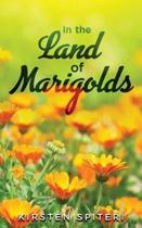 In The Land Of Marigolds