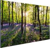Paarse bloemen in het bos Aluminium 90x60 cm - Foto print op Aluminium (metaal wanddecoratie)