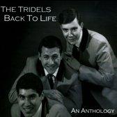 Back To Life: An Anthology