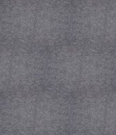 Expo event 876 Gris Chi Moy 5 x 2 (4.95 per m²)