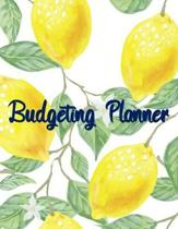 Budgeting Planner: A Monthly Income Expenses Bill Paid Amount Notes and Weekly
