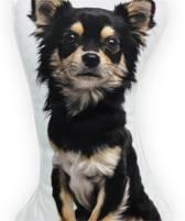 Intimo Hond langharige chihuahua - Sierkussen - 36x20 cm - Zwart/Bruin