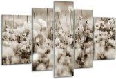 Glas schilderij Bloemen | Sepia | 170x100cm 5Luik | Foto print op Glas |  F006548