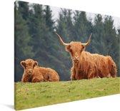 Een moeder en kalf Schotse hooglander Canvas 90x60 cm - Foto print op Canvas schilderij (Wanddecoratie woonkamer / slaapkamer) / Wilde dieren Canvas Schilderijen