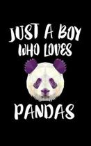 Just A Boy Who Loves Pandas