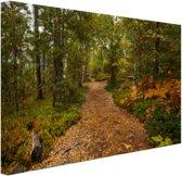 FotoCadeau.nl - Een bospad vol met bladeren Canvas 120x80 cm - Foto print op Canvas schilderij (Wanddecoratie)