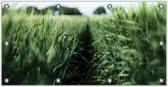 Tuinposter Graslandschap 200x100cm- Foto op Tuinposter (wanddecoratie voor buiten en binnen)