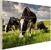 Drie Holstein koeien Hout 80x60 cm - Foto print op Hout (Wanddecoratie)