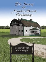 The Secret of Meadowbrook Orphanage