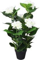 Kunst hortensia plant met pot 60 cm wit (incl. Fotolijst)