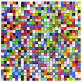 Mozaieksteentjes heldere kleuren 784 stuks