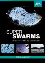 Bbc Earth: Superswarms