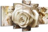 Glasschilderij Roos   Wit, Bruin   170x100cm 5Luik   Foto print op Glas    F003330