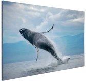 FotoCadeau.nl - Uit het water springende walvis Aluminium 90x60 cm - Foto print op Aluminium (metaal wanddecoratie)