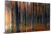 Schilderachtige weergave van de boomstammen van de Redwood forest in China Aluminium 90x60 cm - Foto print op Aluminium (metaal wanddecoratie)