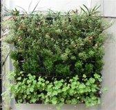 Plantenhanger 9 zakken - Plantenbak - Plantenrek - Hangende tuin - Verticale moestuin