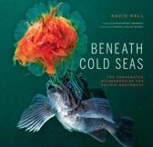 Beneath Cold Seas