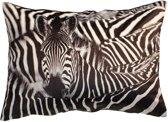 Prachtig Sierkussen Zebra Print - 60 x 40 cm  - heerlijk zacht fluweel - Kussen met ritssluiting incl. polyester vulling - zebraprint
