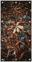 Tuinposter –Herfstbladeren– 100x200cm Foto op Tuinposter (wanddecoratie voor buiten en binnen)