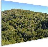 Knalblauwe lucht boven het Nationaal park Garajonay in Spanje Plexiglas 90x60 cm - Foto print op Glas (Plexiglas wanddecoratie)