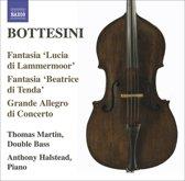 Bottesini: Fantasia Lucia D. L.