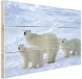 Ijsbeer moeder en welpen Hout 30x20 cm - klein - Foto print op Hout (Wanddecoratie)