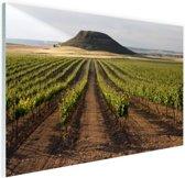 Landelijke wijngaard fotoafdruk Glas 90x60 cm - Foto print op Glas (Plexiglas wanddecoratie)