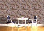 Fotobehang Wilde dieren | Bruin | 152,5x104cm