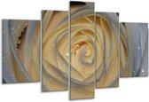Glasschilderij Roos   Wit, Geel, Grijs   170x100cm 5Luik   Foto print op Glas    F000900