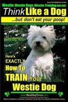 Westie, Westie Dogs, Westie Training AAA AKC