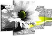 Canvas schilderij Bloem | Grijs, Wit, Geel | 160x90cm 4Luik