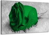 Canvas schilderij Roos | Groen, Grijs, Zwart | 140x90cm 1Luik