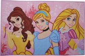 Disney Speelkleed Princess Roze 80 X 120 Cm