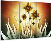 Glasschilderij Bloem | Geel, Bruin, Wit | 120x80cm 3Luik | Foto print op Glas |  F004129