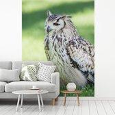 Fotobehang vinyl - Een Bengaalse oehoe zit in het groene gras breedte 300 cm x hoogte 400 cm - Foto print op behang (in 7 formaten beschikbaar)