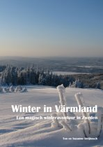 Winter in Värmland