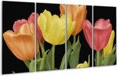 Glasschilderij Tulpen | Geel, Oranje, Rood | 160x80cm 4Luik | Foto print op Glas |  F003202
