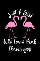 Just A Girl Who Loves Pink Flamingos: Flamingos Notebook - Cute Gift For Girls And Women (Lined, 6'' x 9'')