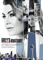 Grey's Anatomy - Seizoen 14