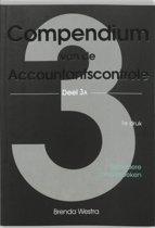 3A Compendium van de accountantscontrole