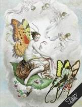 Fairy Notebook Collection