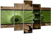 Glasschilderij Bloem | Groen, Bruin | 170x100cm 5Luik | Foto print op Glas |  F004472