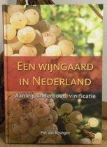 Een wijngaard in Nederland