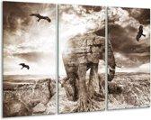 Glasschilderij Olifant   Grijs, Wit   120x80cm 3Luik   Foto print op Glas    F003927