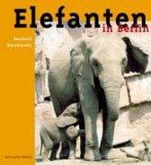 Elefanten in Berlin