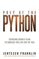 The Spirit of Python