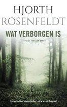 Boekomslag van 'Bergmankronieken 1 - Wat verborgen is'