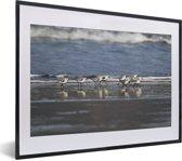 Foto in lijst - Groepje strandplevieren op het strand fotolijst zwart met witte passe-partout klein 40x30 cm - Poster in lijst (Wanddecoratie woonkamer / slaapkamer)
